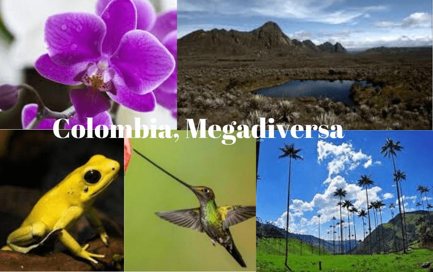 viaja a colombia