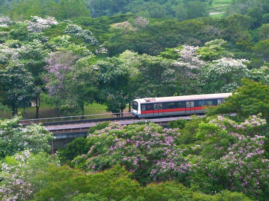 Cómo moverse por Singapur: tren