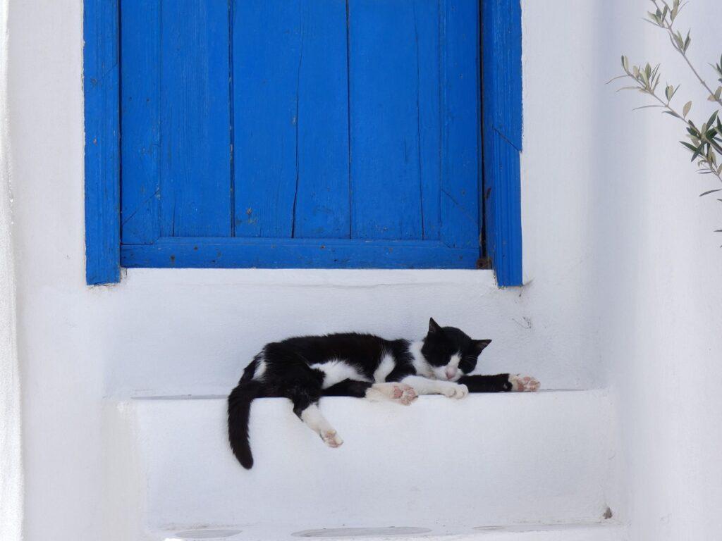 La seguridad en Grecia. Fuente: 43965-Pixabay