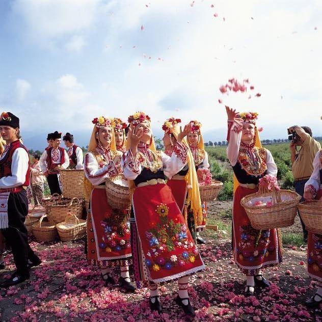 Las rosas búlgaras. Fuente: @rosefestivalkz, Instagram
